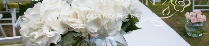 AMOR EN BLANCO Y VERDE. Ceremonia en La Envía (Almería)