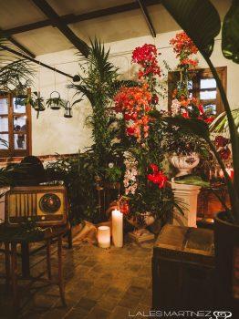 Decoración de estilo tropical
