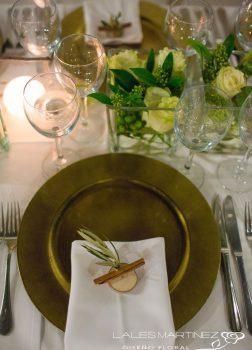 Detalle para servilleta de olivo